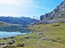 Excursiones Lagos de Covadonga